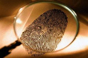 Частный детектив в Красноярске