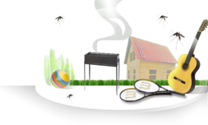Обработка от комаров на участке, даче, саду и прочих территориях. Уничтожение комаров в Вологде и Вологодском районе.