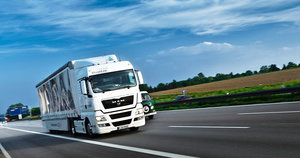 Организация перевозок грузов в Новгородской области
