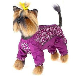 Акция на зимнюю одежду для собак!