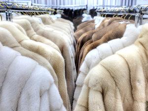 Экспертизы товаров из натуральной кожи и меха в Вологде