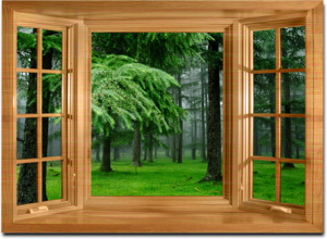 Прочные и долговечные окна из лиственницы