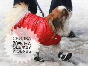 Одежда и обувь для животных со скидкой