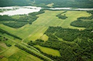 Помощь в получении участка по программе Вологодский гектар