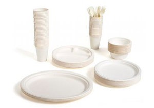 Где купить одноразовую посуду в Череповце?