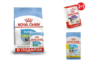 АКЦИИ НА КОРМА ROYAL CANIN!