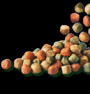 Купить корм в Череповце