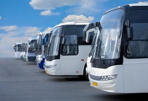 Пассажирские перевозки по Вологодской области