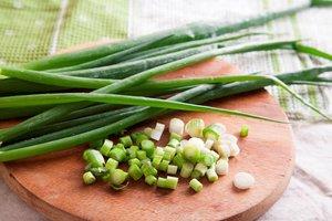 Зеленый лук оптом от производителя
