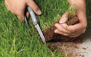 Квалифицированная помощь при земельном разделе