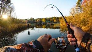 Товары для рыбалки. У нас вы найдете все необходимое!