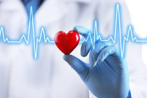 Запись на прием к платному врачу кардиологу.