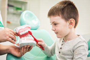 Прием детского зубного врача в Вологде