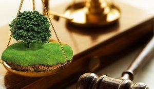 Консультации юриста по земельным вопросам Череповец