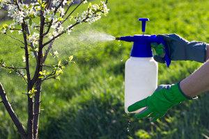 Санитарная обработка как мера защиты от вредителей: проводим в Череповце