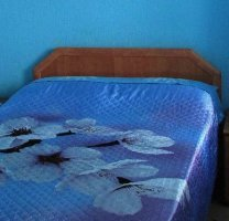 Предлагаем снять номер в гостинице в центре Новокузнецка всего за 1400 рублей в сутки! Установлена доступная цена!