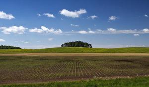 Программа Губернатора «Вологодский гектар»: консультации и помощь