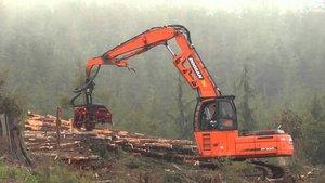 Перегружатели леса Doosan в Череповце