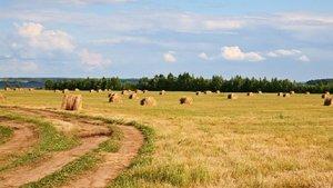 Подать заявку на Вологодский гектар