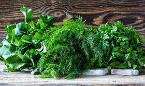Купить зелень оптом от производителя в Вологде