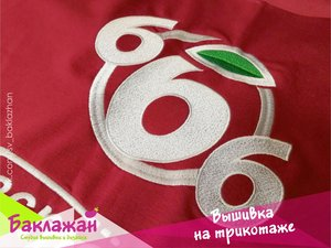 Нанесение логотипа на одежду в Череповце