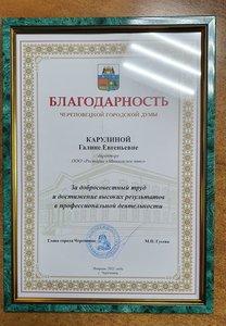 Награждение благодарностью череповецкой городской думы