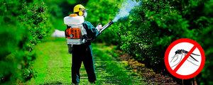Уничтожение комаров на Вашем участке