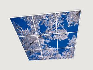 Витражные стеклянные потолки - характерные особенности конструкций