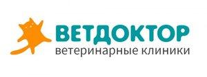 ФГДС для животных в Оренбурге - Ветдоктор