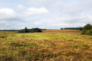 Оформление участка в рамках программы Вологодский гектар