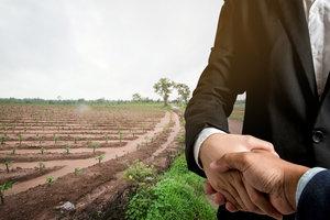 Помощь в процедуре земельного раздела в Вологде