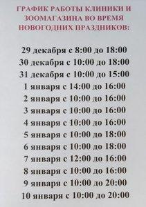 График работы клиники и зоомагазина во время новогодних праздников