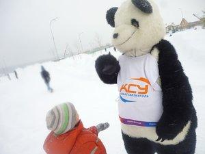 Провайдеры Кемерово на «Салазках из сказки» или Как Панда «Кузбассвязуголь» нашел новых друзей в «Лесной поляне»