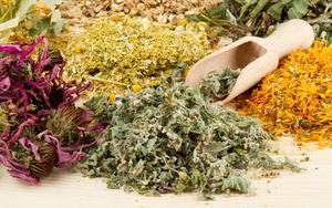 Лекарственные травы в Оренбурге
