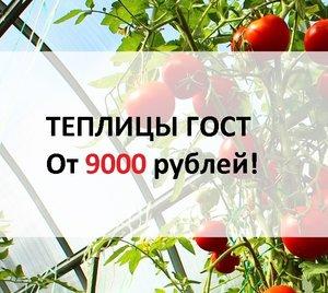 Теплица Новокузнецк ГОСТ всего от 9000 рублей!