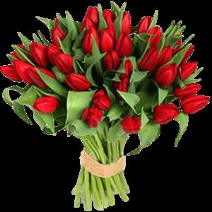 Букет тюльпанов в Череповце