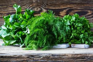 Свежая зелень оптом от производителя в Вологде