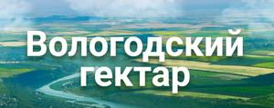 Как оформить землю по программе Вологодский гектар?