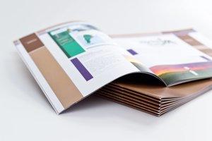 Оперативная печать брошюр в Вологде