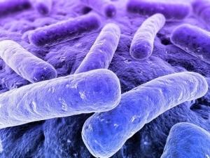 Уничтожение микроорганизмов