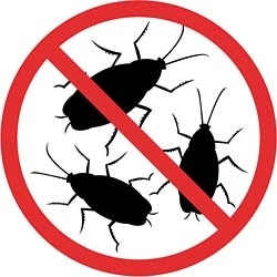 Обработка помещений от тараканов