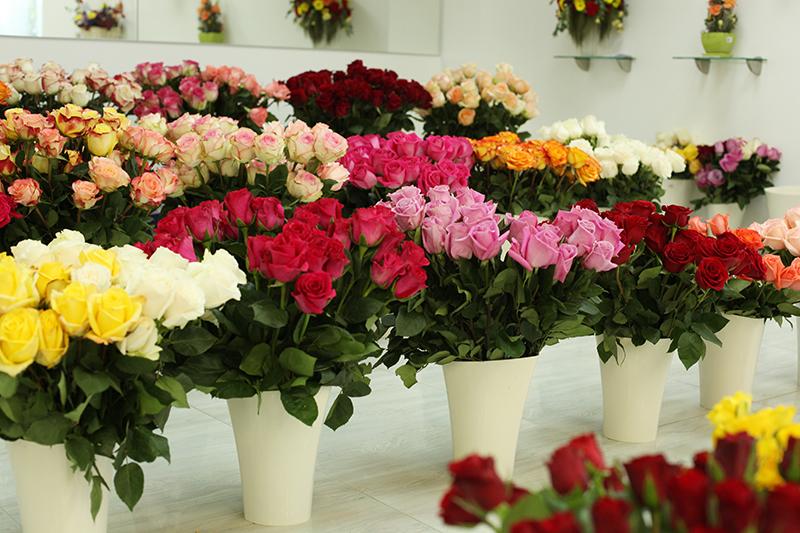 Свежесрезанные цветы картинки