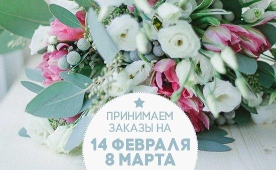 цветы дейзи
