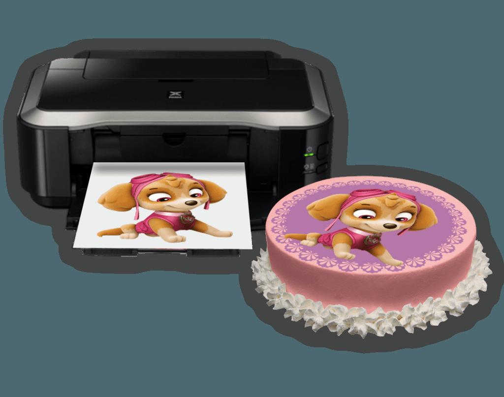 комсомолка пищевой фотопринтер для съедобной фотопечати узнать