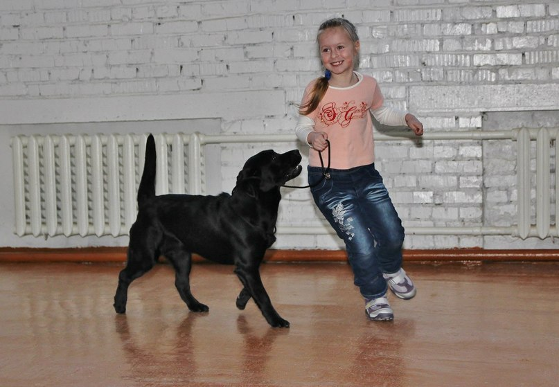 Детские клиники г.орёл
